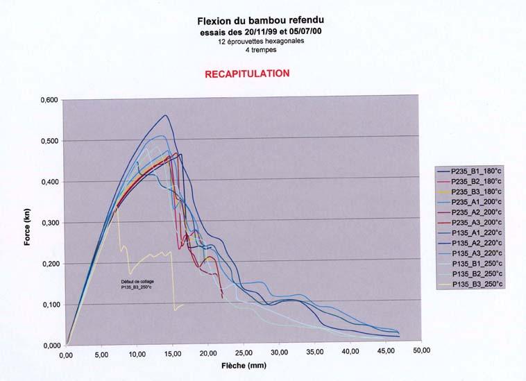 graphe_recap_flexion_bambou.jpg